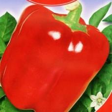 Насіння перець червоний гігант gl seeds
