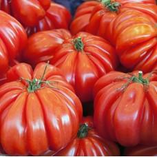 Насіння томатів американський ребристий