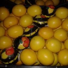 Лимон маєр