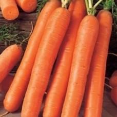 Насіння морква королева осені gl seeds